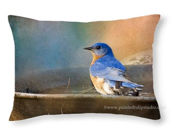 Rectangle Pillow Fine Art Photography Bluebird Rustic Woodland Cottage Home Decor