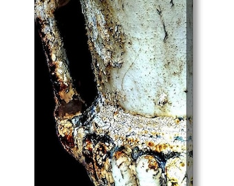 Dramatic Rusted Cast Iron Garden Urn Chipped Cracked Antique Still Life Fine Art Photography on Giclee Gallery Wrap Canvas