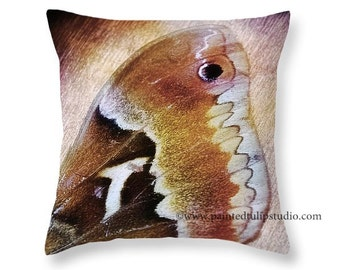 Silk Moth Wing Butterfly Nature Woodland Rustic Square Accent Decorative Pillow Fine Art Photography Home Decor