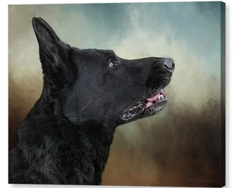 Black German Shepherd Portrait Fine Art Photography Giclee Print or Canvas