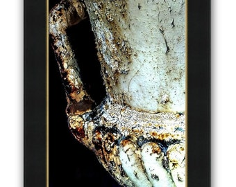 Dramatic Rusted Cast Iron Garden Urn Chipped Cracked Antique  Rustic Elegance Still Life Fine Art Photography Print