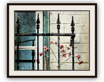 Whimsical Cottage Chic Rustic Blue Teal Window Wrought Iron Bars with Pink Flowers Architecture Still Life Fine Art Photography Print
