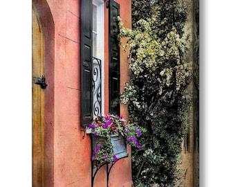 Charleston SC, Queen St Row Home Architecture Wooden Door Window Flower Box, Terra Cotta Black Shutters Gallery Canvas Wrap Giclee