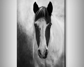 Black and White Horse Art on Canvas, Equine Western Horse, Horse Lover's Gift, Woodland Zen Fine Art Photography Giclee Gallery Wrap Canvas