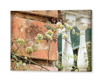 Charleston South Carolina Architecture Garden Wall Climbing Lady Banks Yellow Rose Photography on Giclee Gallery Wrap Canvas