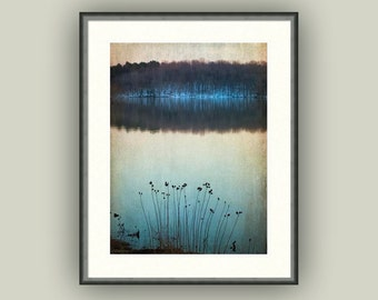 Nature Winter Lake Snow Woodland Landscape Peaceful Zen Flowers Lake Brandt  North Carolina Countryside Fine Art Photography Print