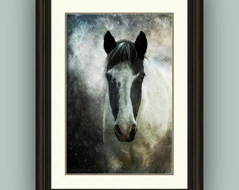 Surreal Magical Mystical Horse Giclee Print and Giclee Canvas Wall Art Decor