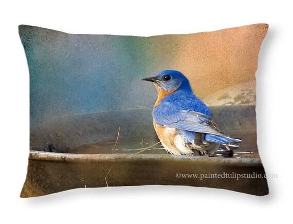 Rectangle Pillow Fine Art Photography Bluebird Rustic Woodland Cottage Home Decor