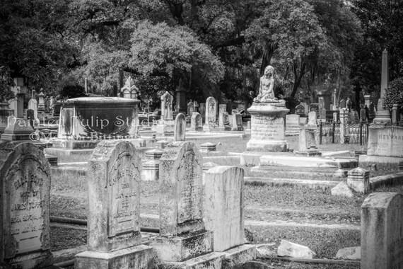 Graves at Magnolia