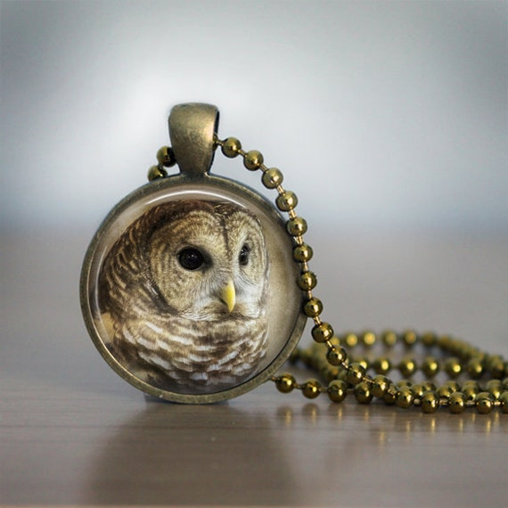 Barred Owl Pendant Necklace
