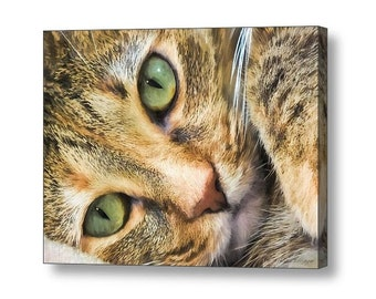 Green Eyed Feline Cat Portrait Closeup, Cat Lover's Gifts ,  Fine Art Print or Giclee Gallery Wrap Canvas