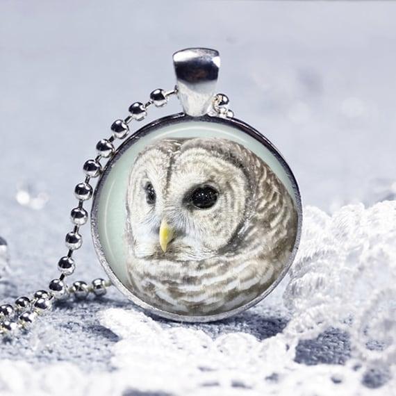 Winter's Owl Pendant Necklace