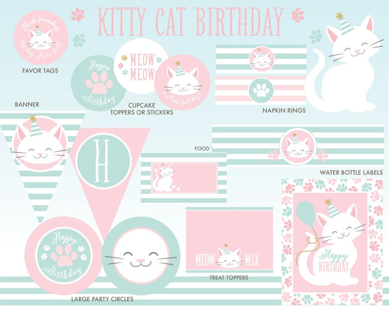 Kitty Cat Birthday Decorations INSTANT DOWNLOAD Kitten Party