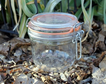Vintage French Canning Jar with Glass Lid and Metal Bail, Pickling Jar, Terrarium Jar, Craft
