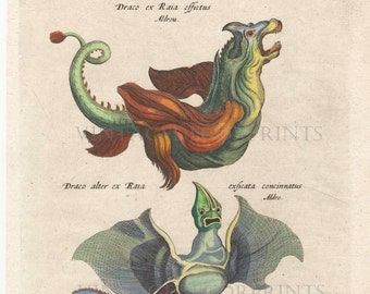 Antique Sea Monster Engraving, Fictitious Sea Creatures Original 1657 Engraving From Johnston Merian, Hand Coloured in Watercolour.