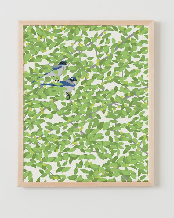 Framed Fine Art Print. Blue Jays in Fruit Tree. May 1, 2014.