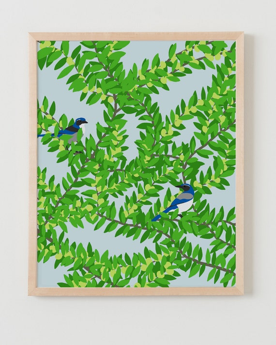 Fine Art Print. White Plum Tree with Blue Jays.  June 26, 2012.