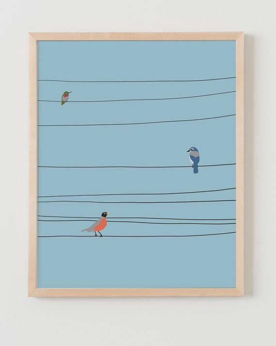 Framed Fine Art Print.  Hummingbird, Blue Jay, and Robin on Wires.  February 18, 2014.