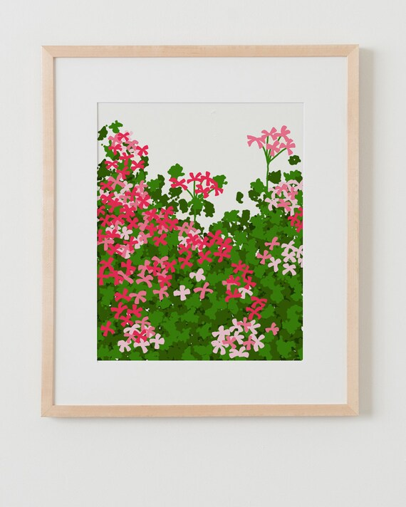 Fine Art Print.  Geraniums.  January 5, 2012.