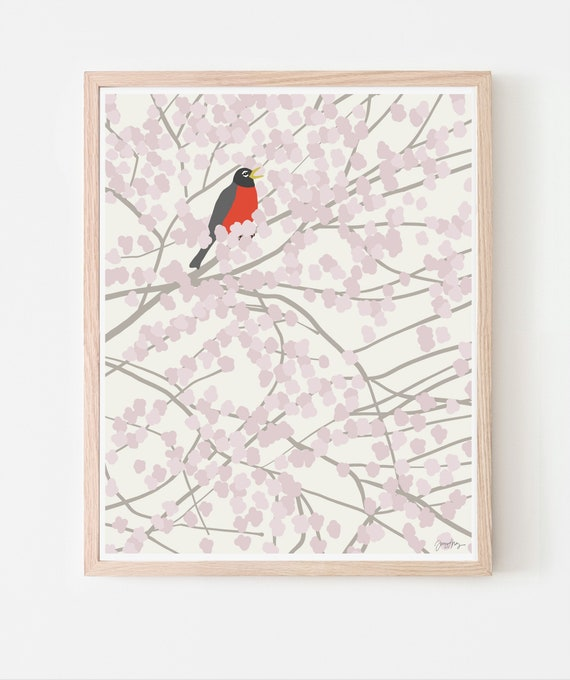 Robin in Blossoming Cherry Tree Art Print. Available Framed or Unframed. 140212.