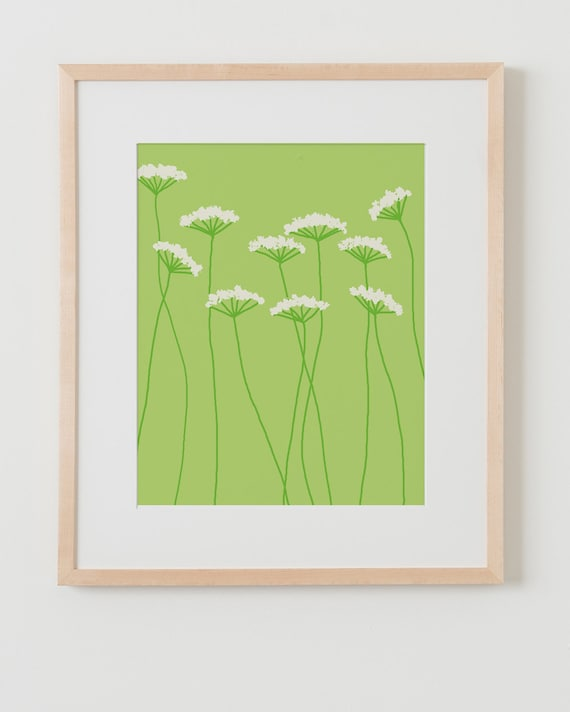 Fine Art Print.  Queen Anne's Lace.  August 1, 2011.