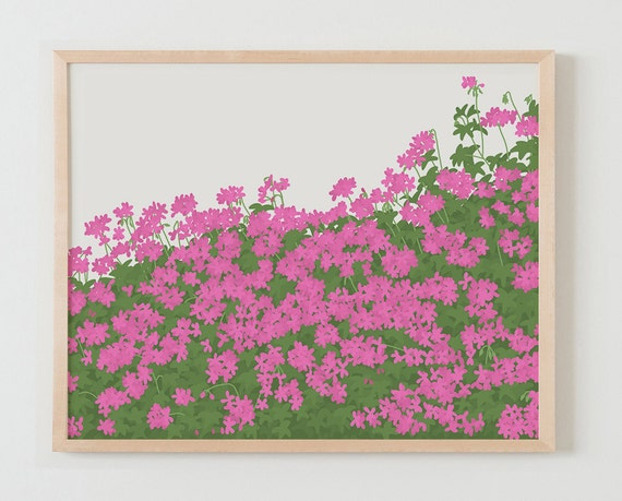 Fine Art Print.  Geraniums in Bloom.  April 19, 2016.