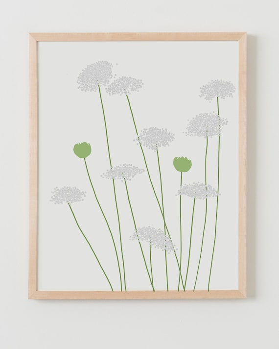 Fine Art Print.  Queen Anne's Lace, August 19, 2015.