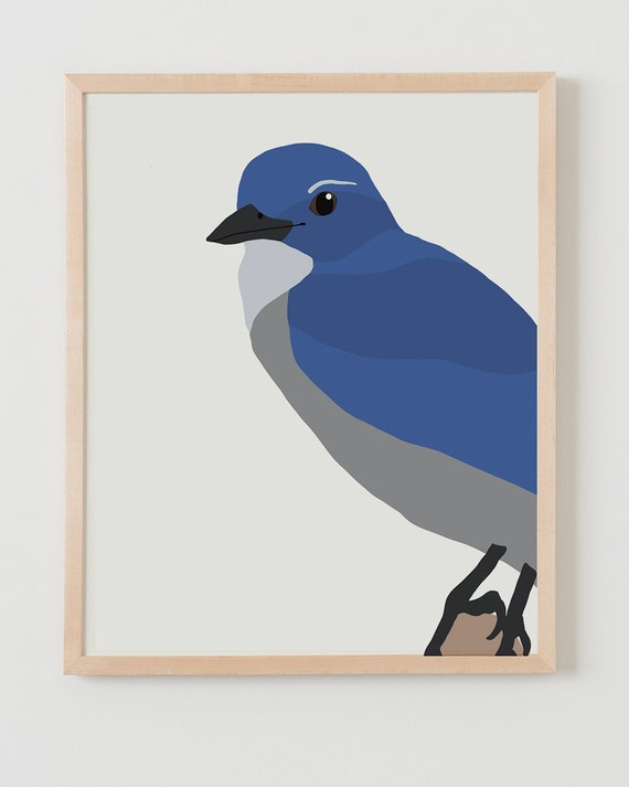 Fine Art Print. Blue Jay. September 10, 2014.
