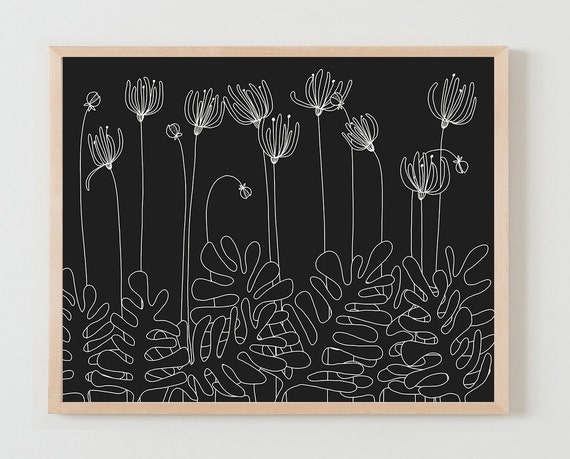 Fine Art Print.  White Flowers on Black Background. November 2, 2015.