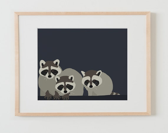 Fine Art Print.  Baby Raccoons. July 22, 2015.