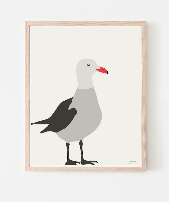Heerman's Gull Art Print. Available Framed or Unframed. 150112.