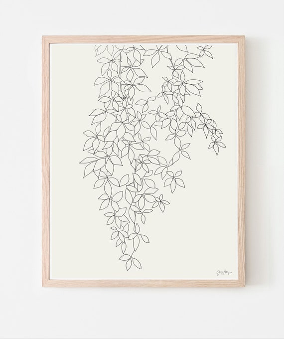 Fine Art Print.  Vine.  Available Framed or Unframed. 140905.