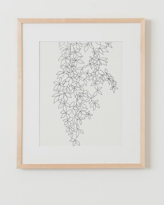 Fine Art Print.  Vine.  September 5, 2014.