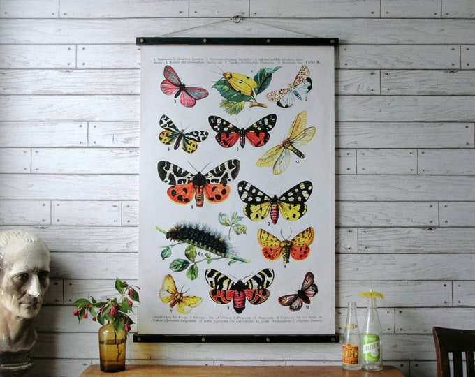 Butterflies Wall Hanging, Canvas Print with Wood Poster Hanger, Framed Art with Brass Hardware, Pull Down Reproduction, Gift