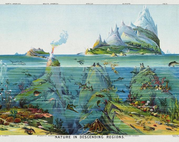 Oceans Pictorial Map