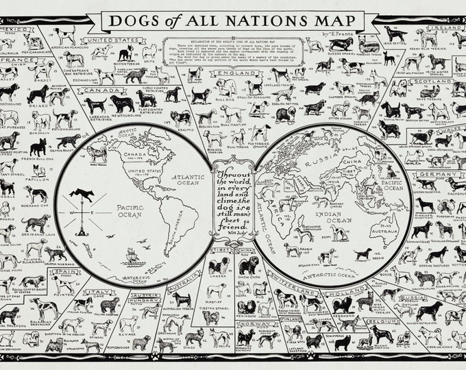Dogs of All Nations World Map Canvas Fabric Print