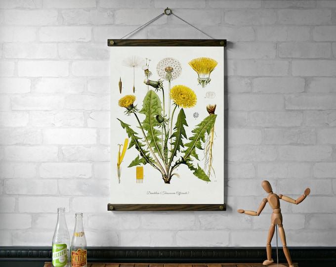 Dandelion Botanical Chart