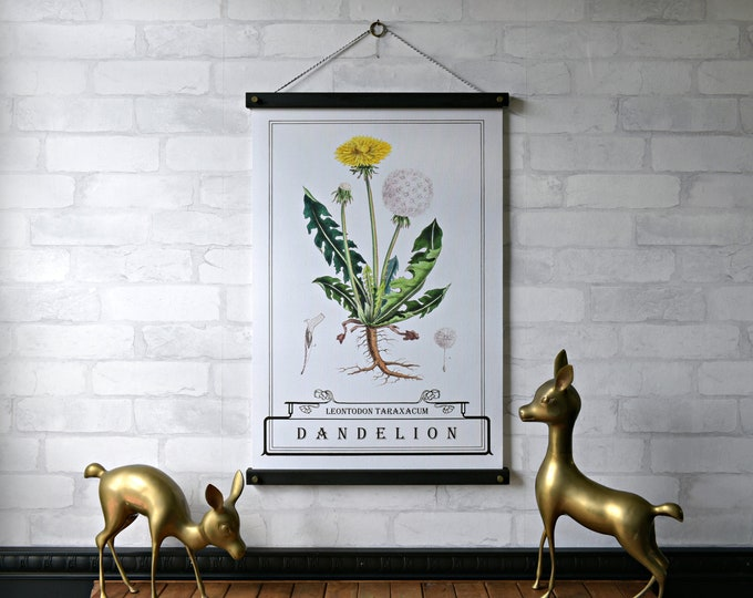 Dandelion Typography Botanical Chart - NEW PRINT of the WEEK 20% off until Aug. 18