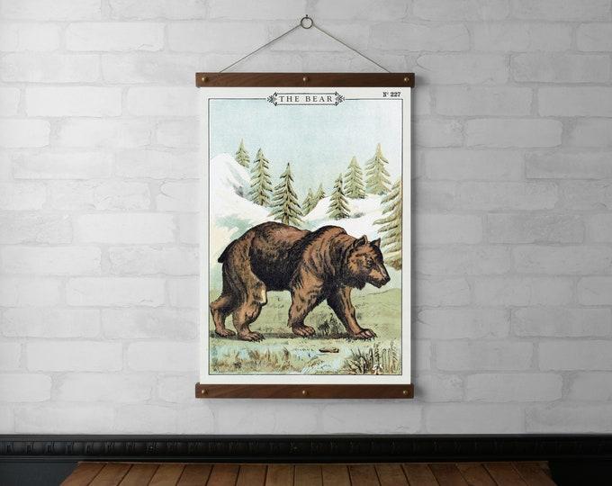 The Bear No. 227