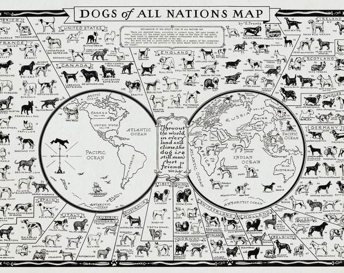 Dogs of All Nations Poster Art Print on Canvas Fabric or Fine Art Paper