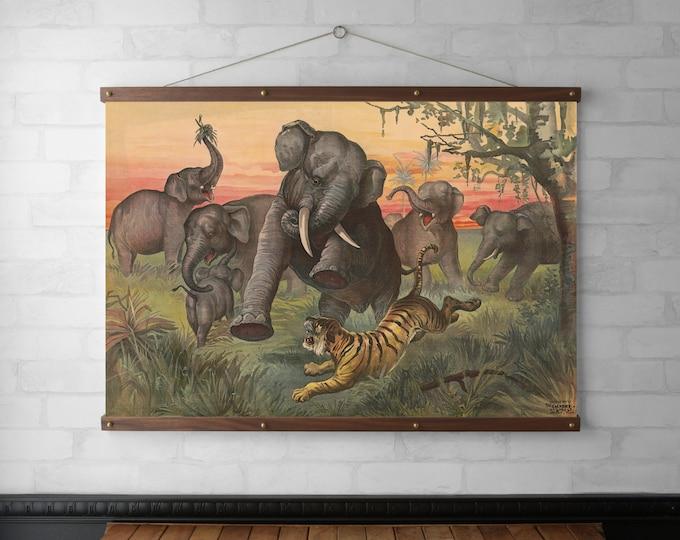 Elephants vs. Tiger
