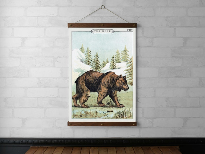 The Bear Vintage Chart Wall Hanging Canvas Print Wood Poster image 0