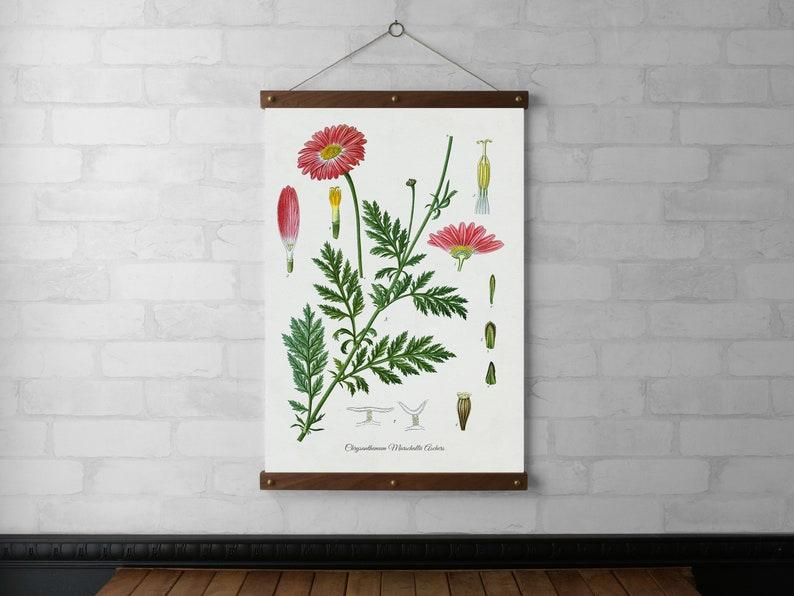 Chrysanthemum Botanical Chart Wall Hanging Canvas Fabric image 0
