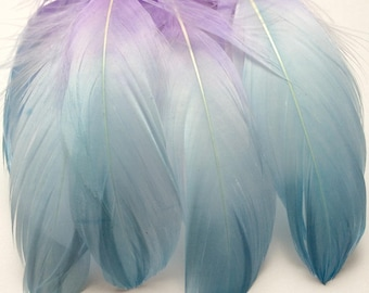 Goose Shoulder Feathers - Turquoise and Purple