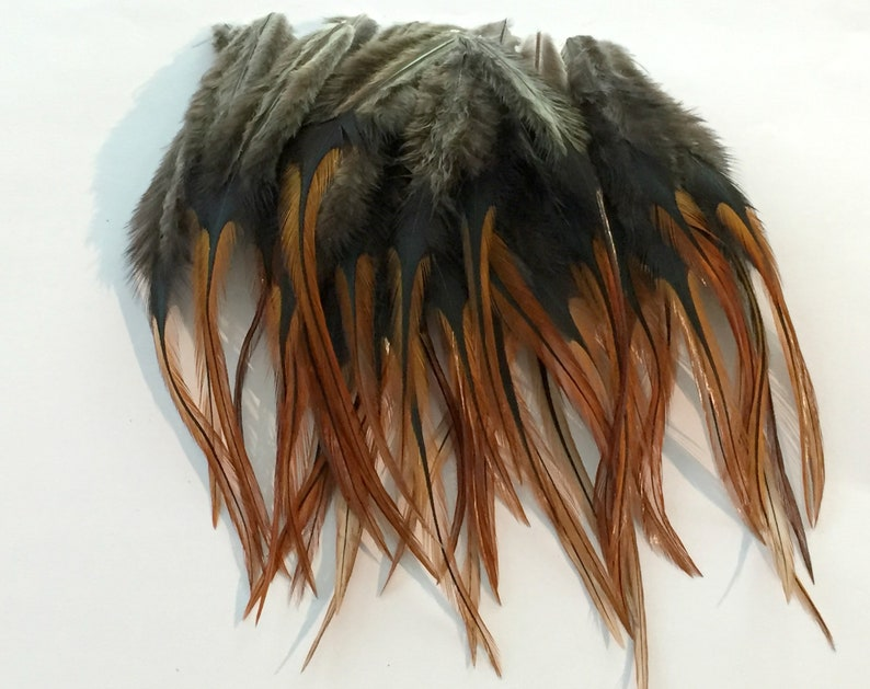 50 Loose Furnace Fluff Rooster Saddle Hackles (3 - 5 inches)