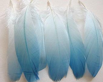 Goose Shoulder Feathers - Light Blue Ombre