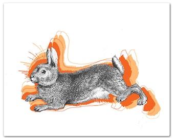 Mixed media Decorative art Animal painting drawing illustration portrait  print POSTER 8x10Cool Rabbit