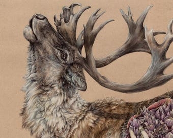 Our Triumph is Our Catastrophe -large limited edition fine art print - caribou deer painting