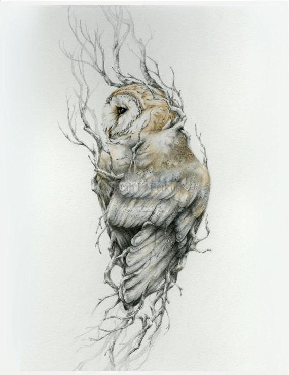 Barn Owl 11 X 14 Reproduction Of Original Drawing Etsy