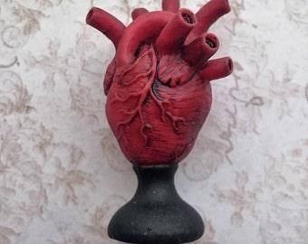 Heart on Pedestal Miniature - Miniature human Heart on Pedestal made of resin